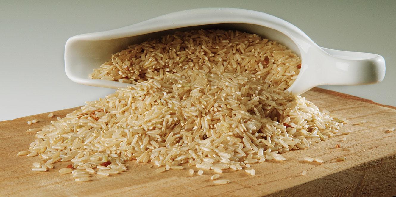 Rice Knowledge Slider 糙米