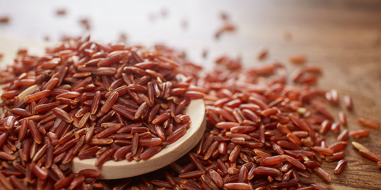 Rice Knowledge Slider 紅米